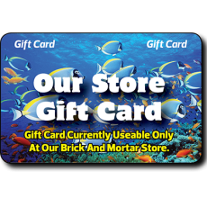 Store Wide Gift Cards
