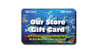 Store Wide Gift Cards - Thumbnail